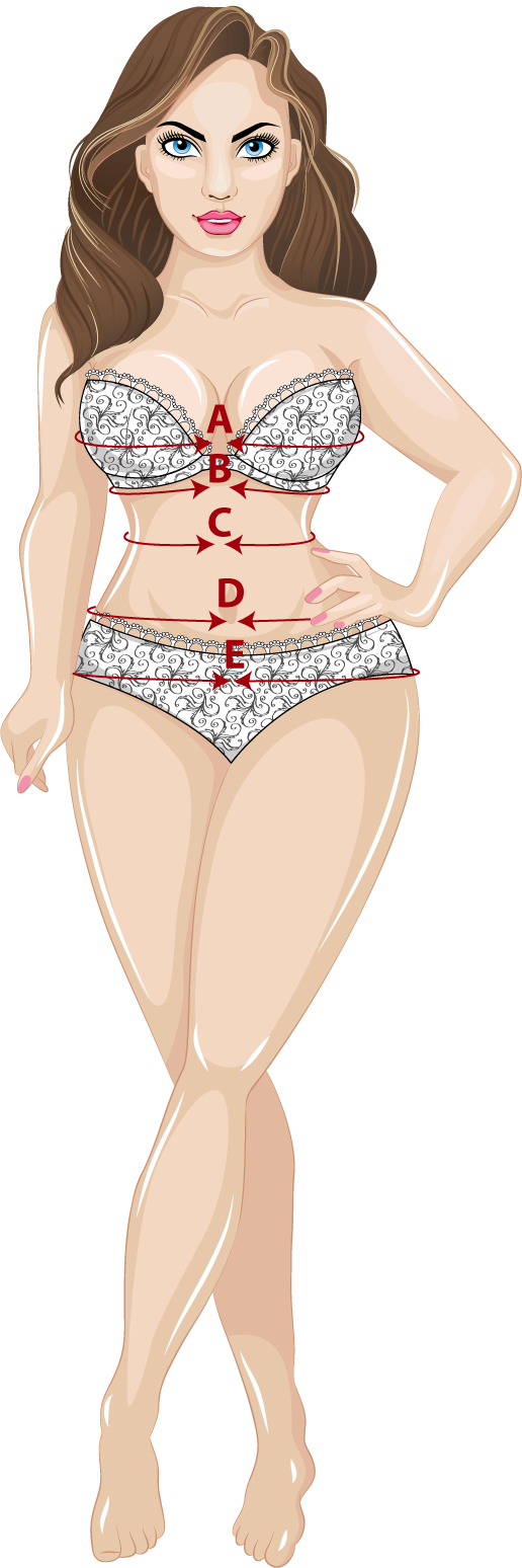 Visual illustration guide on how to measure yourself for a corset